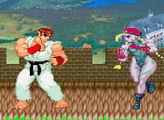 Игра Street Fighter The World Warrior