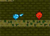 Игра Огонь и вода: Невероятный спуск