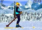 Игра Biathlon the race