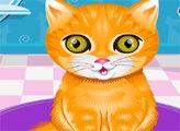 Игра Модный салон для животных