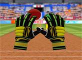Игра Крикет - Лови мяч