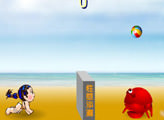Игра Girl and Crab Volleyball