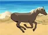 Игра Дворец Лошадей: Скачка