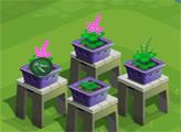 Игра Орхидеевый сад Зандры
