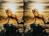 Игра Лошади - отличия