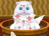 Игра Дневной уход за кошкой Люси