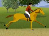 Игра Гнедая лошадь