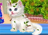 Игра Стрижка и уход за котенком