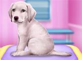 Игра Лабрадор у ветеринара