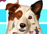 Игра Грязная собака