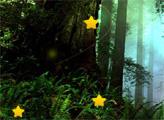 Игра Лесные скрытые звезды