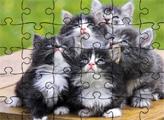 Игра Пазлы: Смешные животные