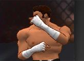 Игра Искусство бойца
