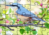 Игра Пазлы: Весна