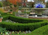 Игра Побег ботанического сада