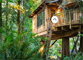 Игра Побег с грибного деревянного домика