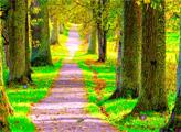 Игра Побег из весенного леса