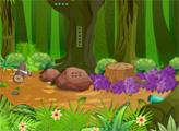 Игра Побег из медвежьего леса