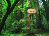 Игра Побег из леса Амазонки