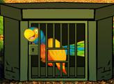 Игра Побег попугая 3