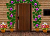Игра Правеена дом