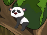 Игра Побег панды