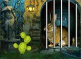 Игра Спаси кролика