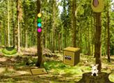 Игра Побег из летнего леса