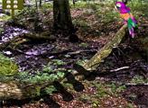 Игра Побег из средневекового леса