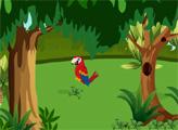 Игра Побег красного попугая