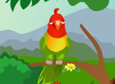 Игра Птицы в Валентинов День