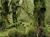 Игра Побег из зелёного леса