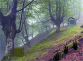 Игра Побег лошади из туманного леса