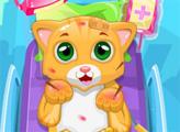 Игра Маленький доктор кошек