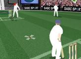 Игра Sabc Sport Cricket Challenge