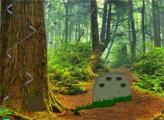 Игра Побег белой индейки из зелёного леса