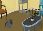 Игра Побег влюблённого кролика