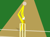 Игра Cann Cricket