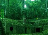 Игра Побег из заброшенного леса Майя
