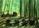 Игра Бамбуковый лес обезьян