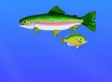 Игра Золотая рыбка