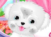 Игра Милый щенок в салоне