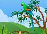Игра Охота на попугаев