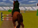 Игра Конкур 3Д