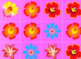 Игра Flower Frenzy